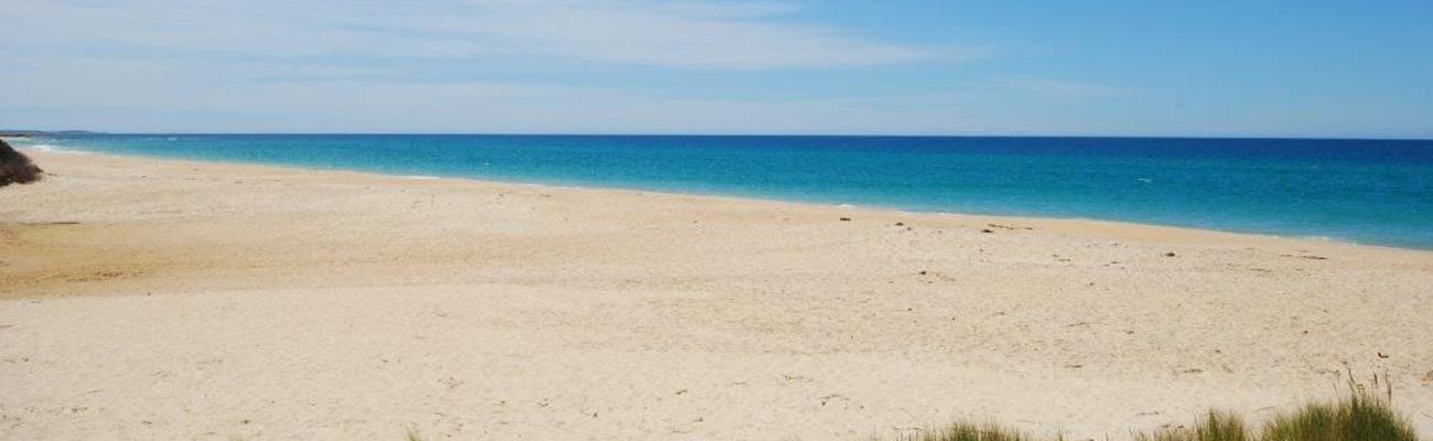 scamander-beach-0999-min