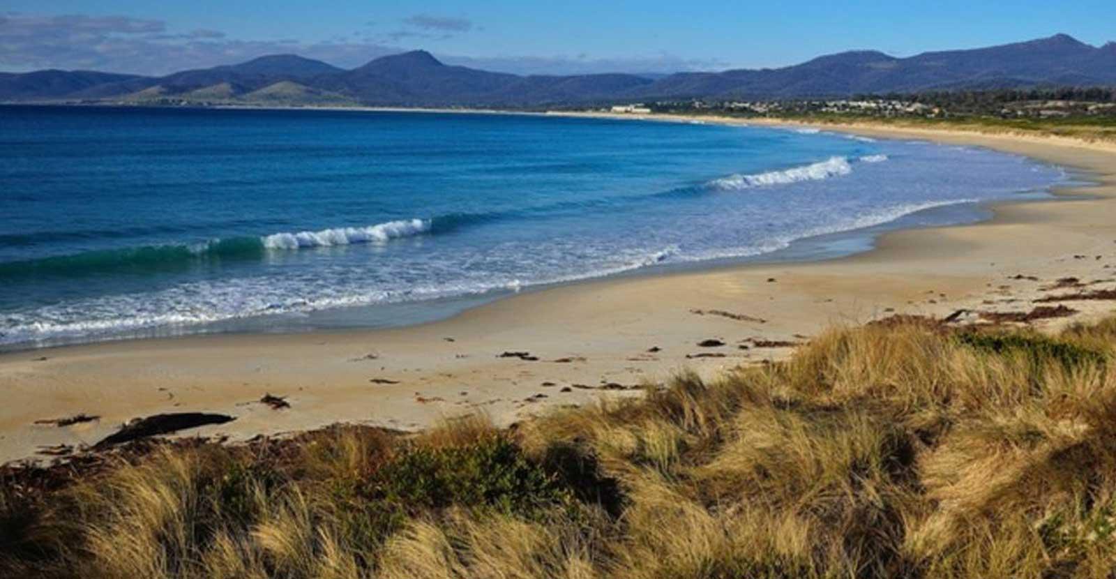scamander-beach