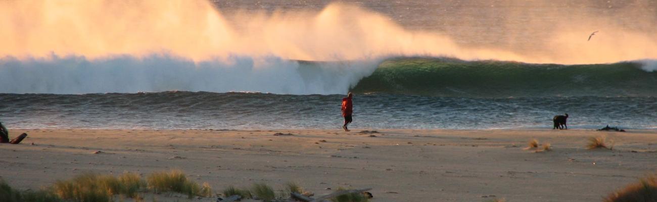 scamander-surf-beach-0111-min